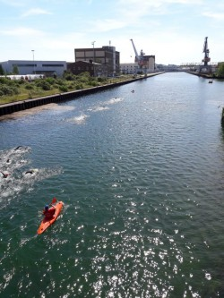 Wasserstadt-Triathlon Limmer